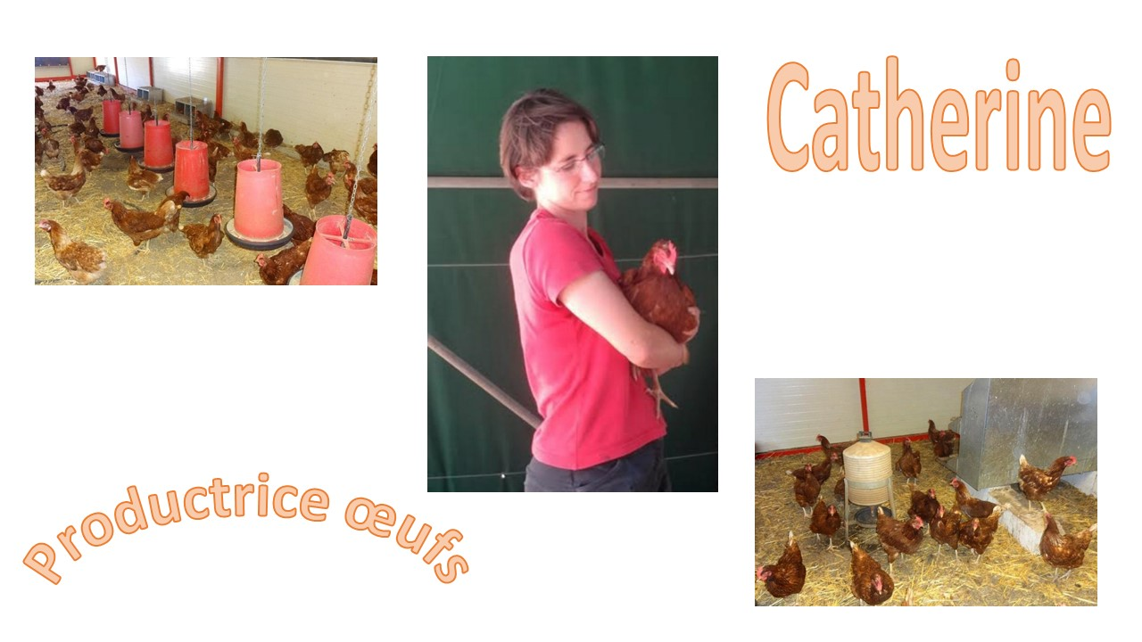 Catherine productrice oeufs